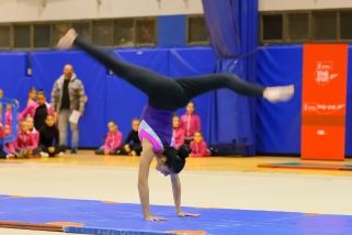 16-12-23-exhibicion-gimnasia-deportiva-219